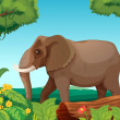 Stock Vector: A big elephant in the jungle