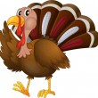 A turkey — Vector de stock