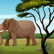 A huge elephant — Stock Vector