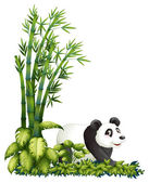 A panda hiding — Stock Vector