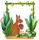 A squirrel and the nut — Stock Vector