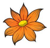 An orange flower — Stock Vector