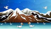 Ducks and water — Stock Vector