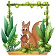A squirrel with a nut — Stock Vector