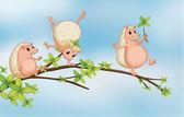Three wild animals playing — Stock Vector