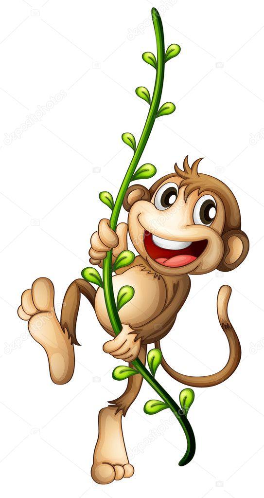 Five Little Monkeys Swinging In A Tree  5 Little Monkeys Swinging In The Tree!