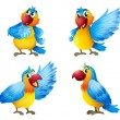 Stock Vector: Four colorful parrots