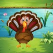 A turkey standing in the riverside - Stock Vector