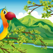 A parrot on a branch of a tree - Stock Vector