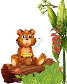 A beaver holding a pot of honey — Stock Vector