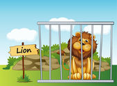 A lion in a fence — Stock Vector
