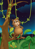 A beaver in the jungle — Stock Vector