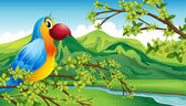 A parrot on a branch of a tree — Stock Vector