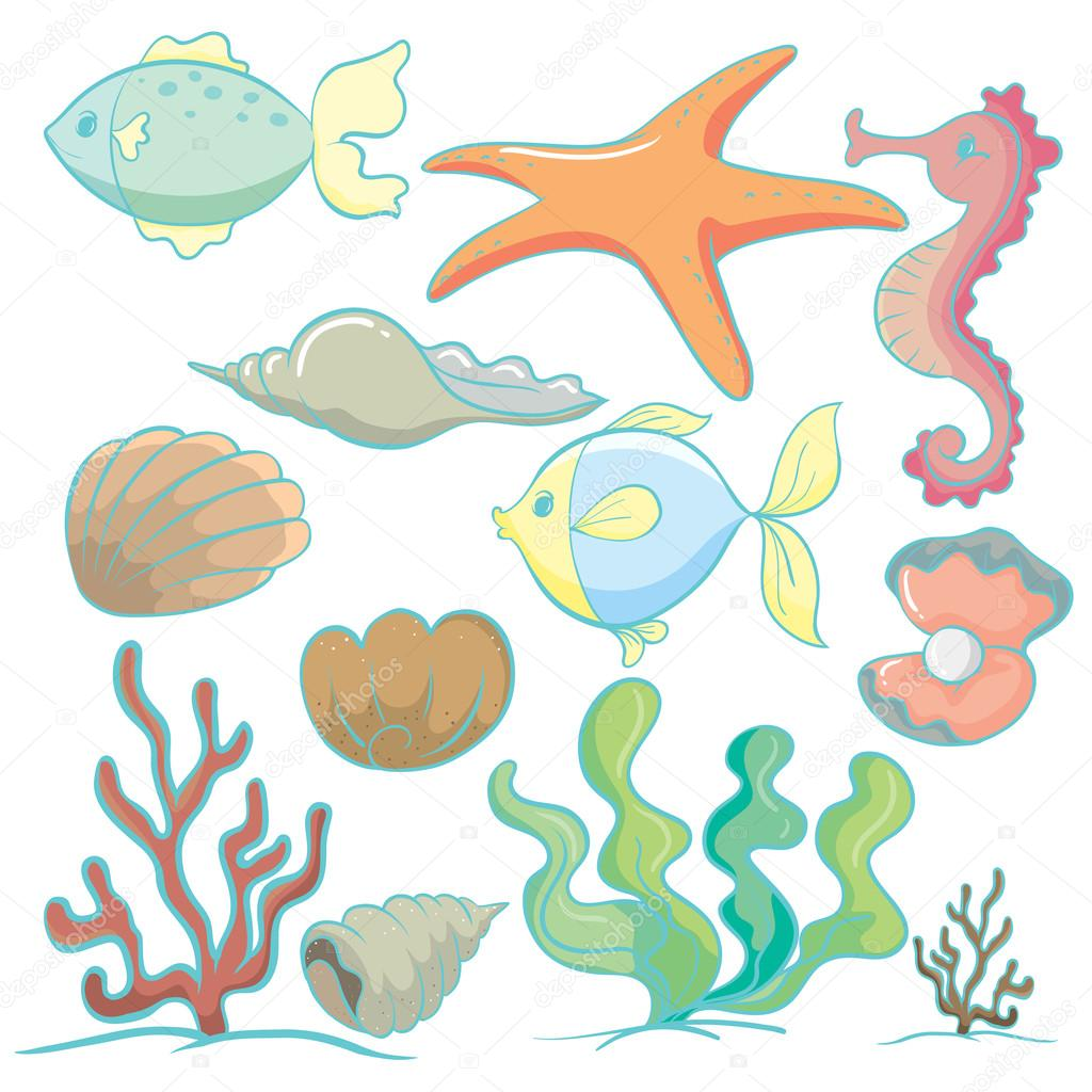 Sea animals and...