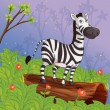 A zebra in the garden - Stok Vektör