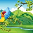 A bird on a branch of a tree — Imagen vectorial