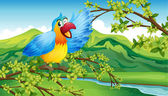 A colorful parrot on a green background — Stock Vector