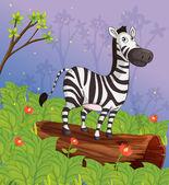 A zebra in the garden — Stock Vector