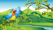 A bird on a branch of a tree — Stock Vector