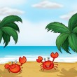 Stock Vector: Crabs in seashore