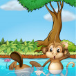 A monkey and a beaver in the pond — Stock Vector