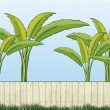 Banana plants and a fence — Stock Vector