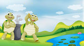 Two turtles near the river — Stock Vector