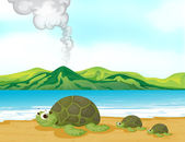 A volcano beach and turtles — Stock Vector