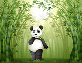 A panda in the bamboo forest — Stock Vector