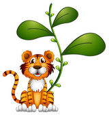 A tiger beside a vine — Stock Vector