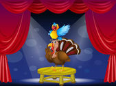 A parrot and a turkey at the stage — Stock Vector