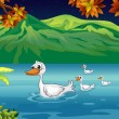 The mother duck and her ducklings in the river — Stock Vector