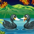 Two ducks in the river — Stock Vector #20060889