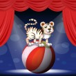 Royalty-Free Stock Vector Image: A tiger performing at the circus