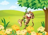 A monkey playing with the vine plant — Stock Vector