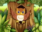 Kutsal ağaçta baykuş ile — Stok Vektör