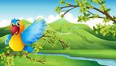 A colorful bird across the mountain — Stock Vector