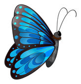 A blue butterfly — Stock Vector