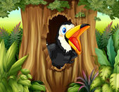 A bird in a tree hollow — Vector de stock