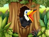 Un oiseau dans un arbre creux — Vecteur
