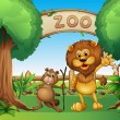 A monkey, beaver and a lion in the zoo — Stock Vector