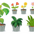 Six pots with plants — Stockvectorbeeld
