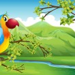 A colorful bird near the mountain — Stock Vector