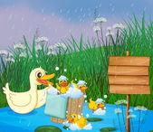 Yağmur altında oynarken onun ducklings anne ördeği — Stok Vektör