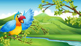 A big and colorful parrot near the river — Stock Vector