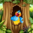 Parrot inside tree hollow — Vector de stock #20264021