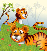 Tigers in the woods — Stock Vector