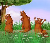 Three wild animals at the road — Stock Vector