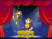 Two monkeys performing on the stage — Stock Vector