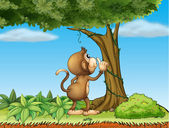 A monkey watching a tree — Stock Vector